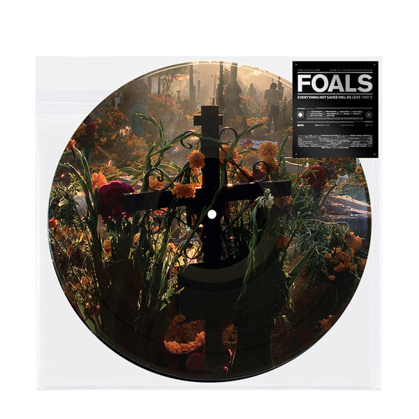 Exclusive Everything Not Saved Will Be Lost Pt. 2 Picture Disc