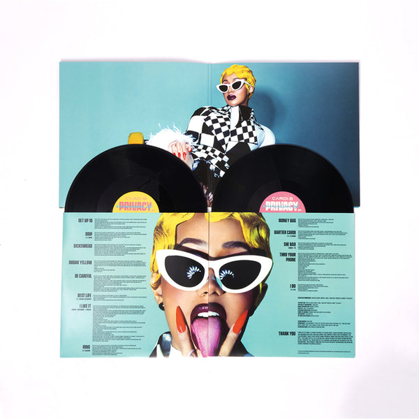 Invasion of Privacy (Vinyl 2xLP)