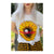 Sunflower T-Shirt (Limited Edition)