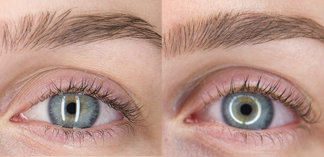 Results after 12 weeks using Plume Lash Serum