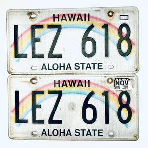 2019 Hawaii License Plate Pair LEZ 618