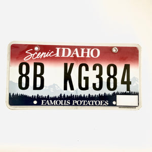 Idaho License Plate 8B KG384