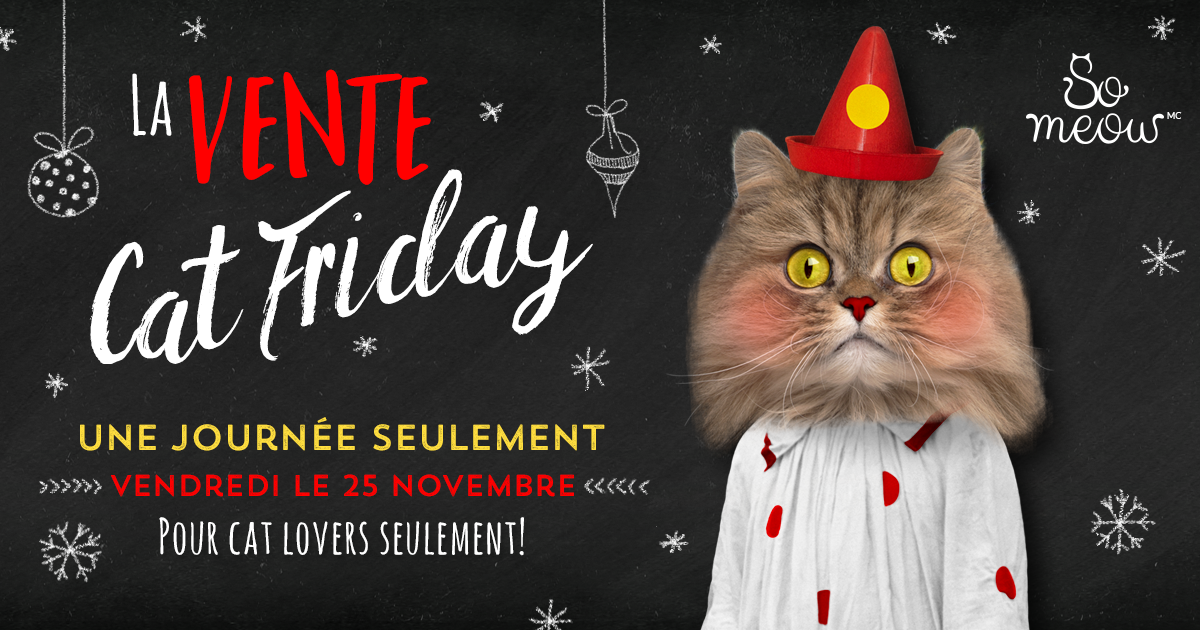 Le Cat Friday!
