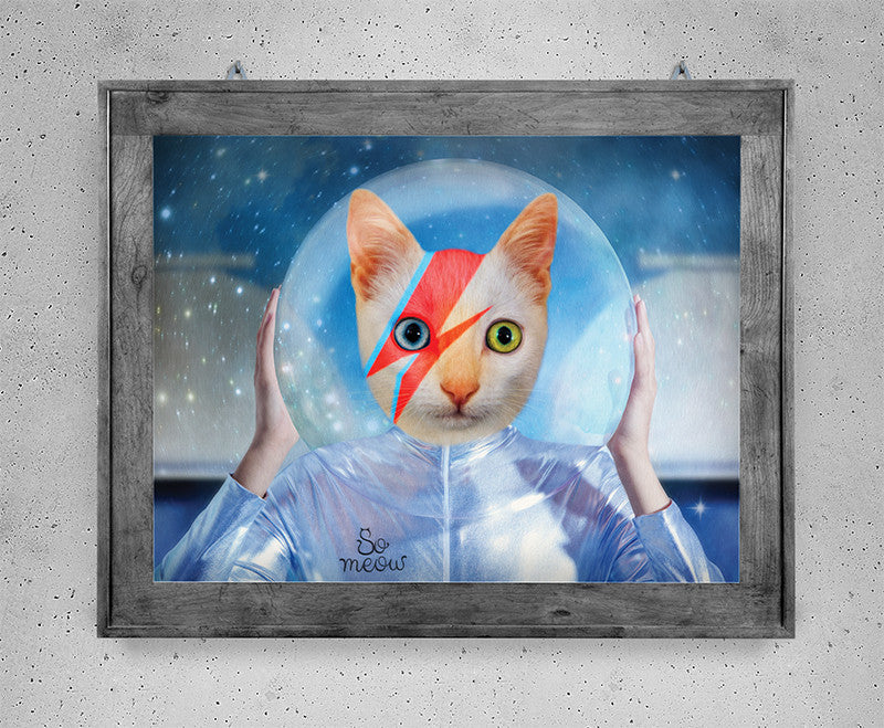 Affiche de chat inspirée de David Bowie - David Bowie tribute print - So Meow