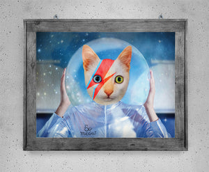 David – Affiche de chat en hommage à David Bowie