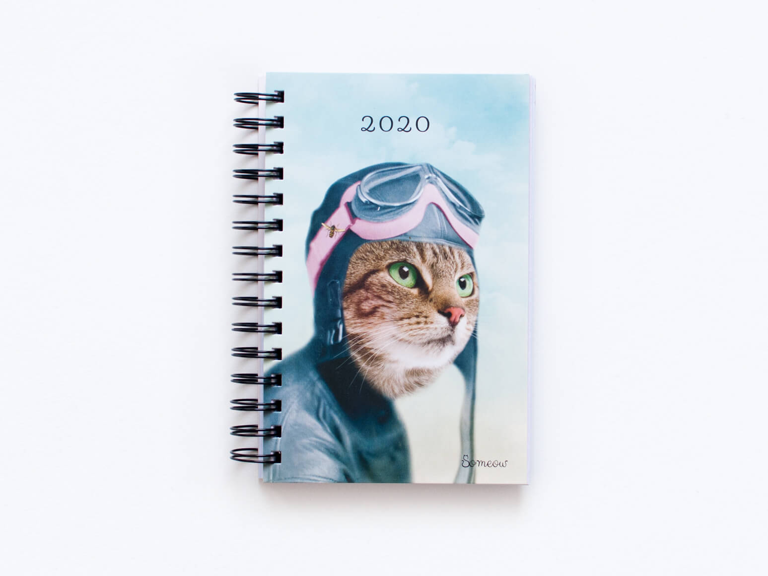 Agenda de chats quotidien L'exploratrice