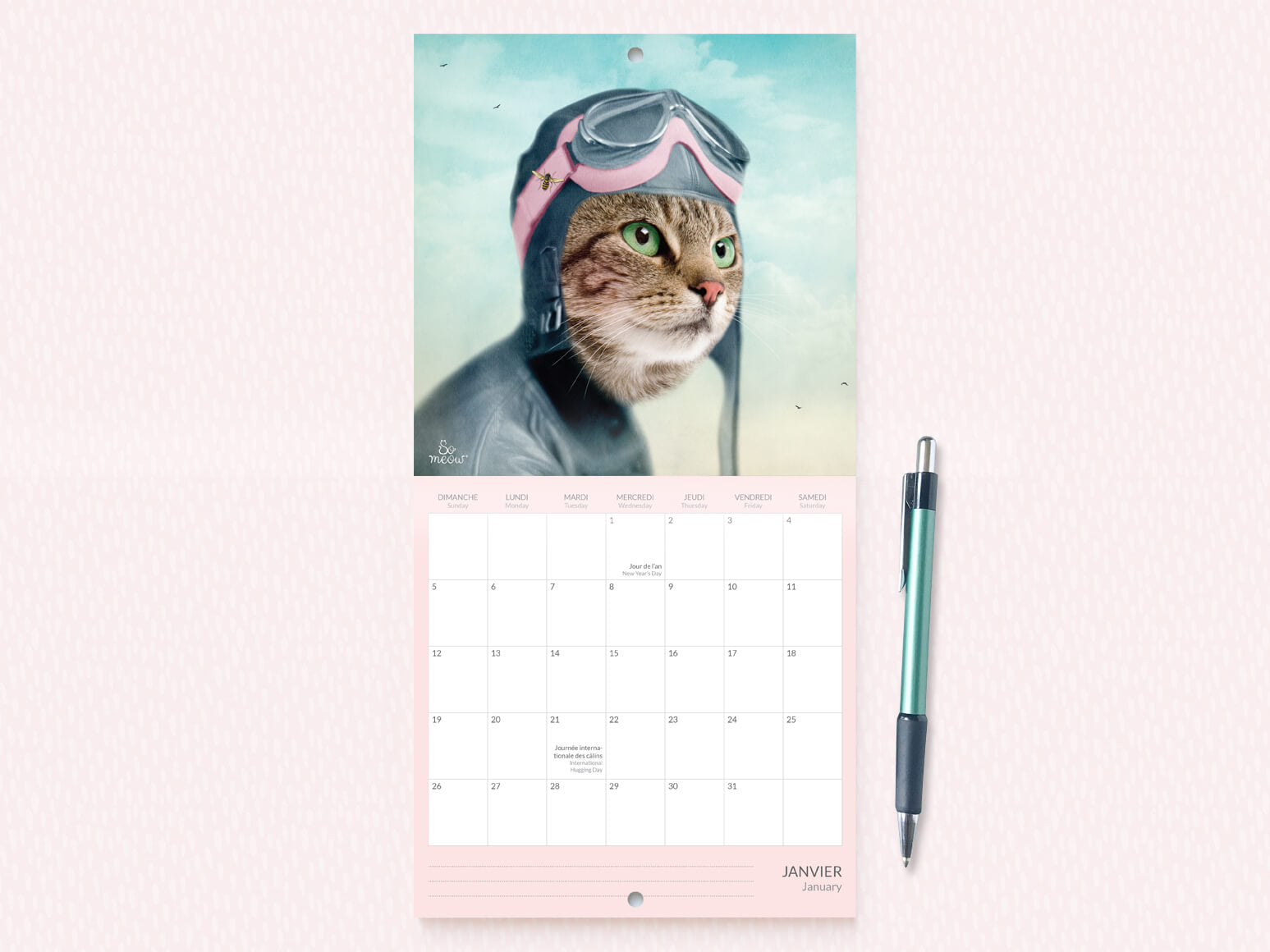 Calendrier de chats 2020 par So Meow