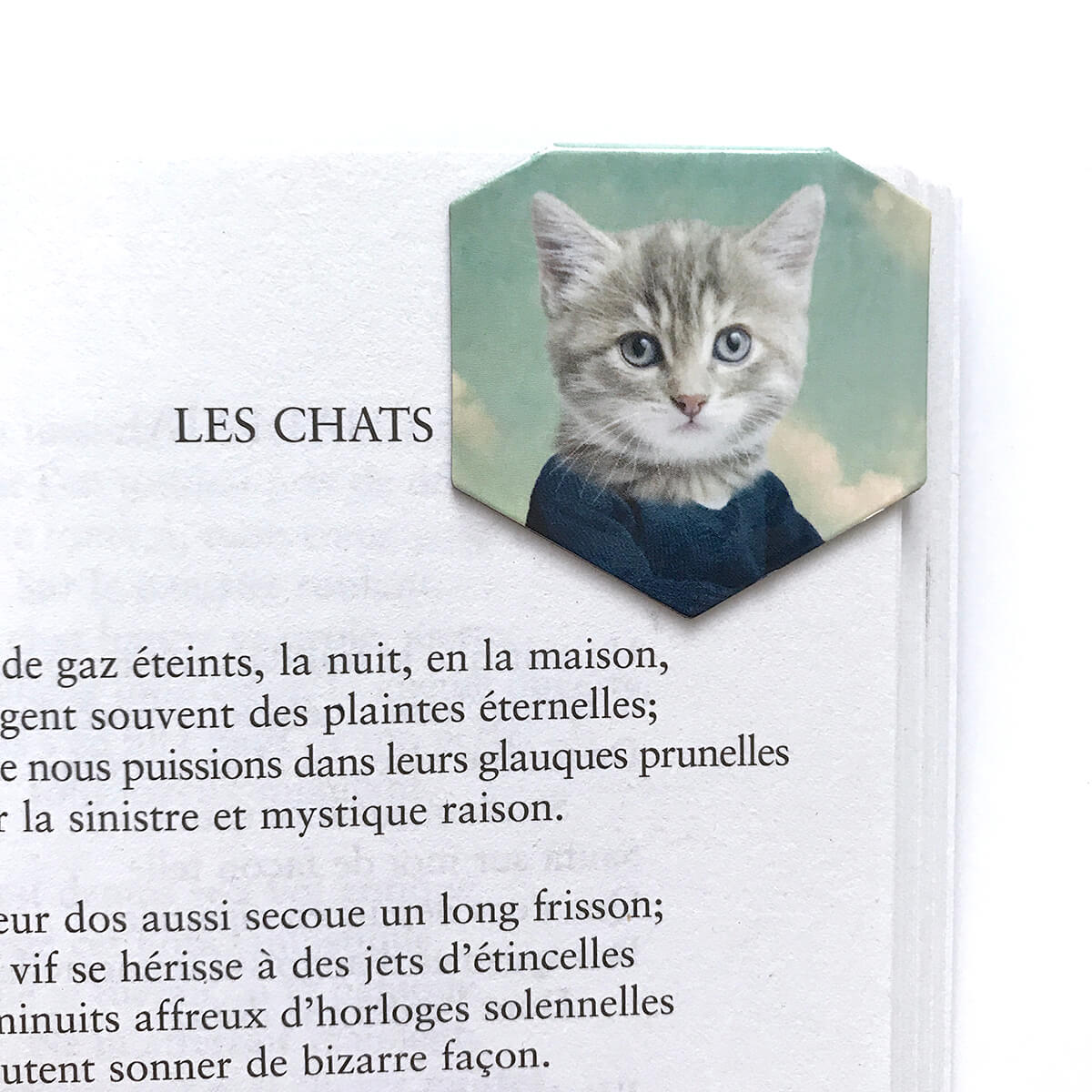 Signet aimanté de chat par So Meow