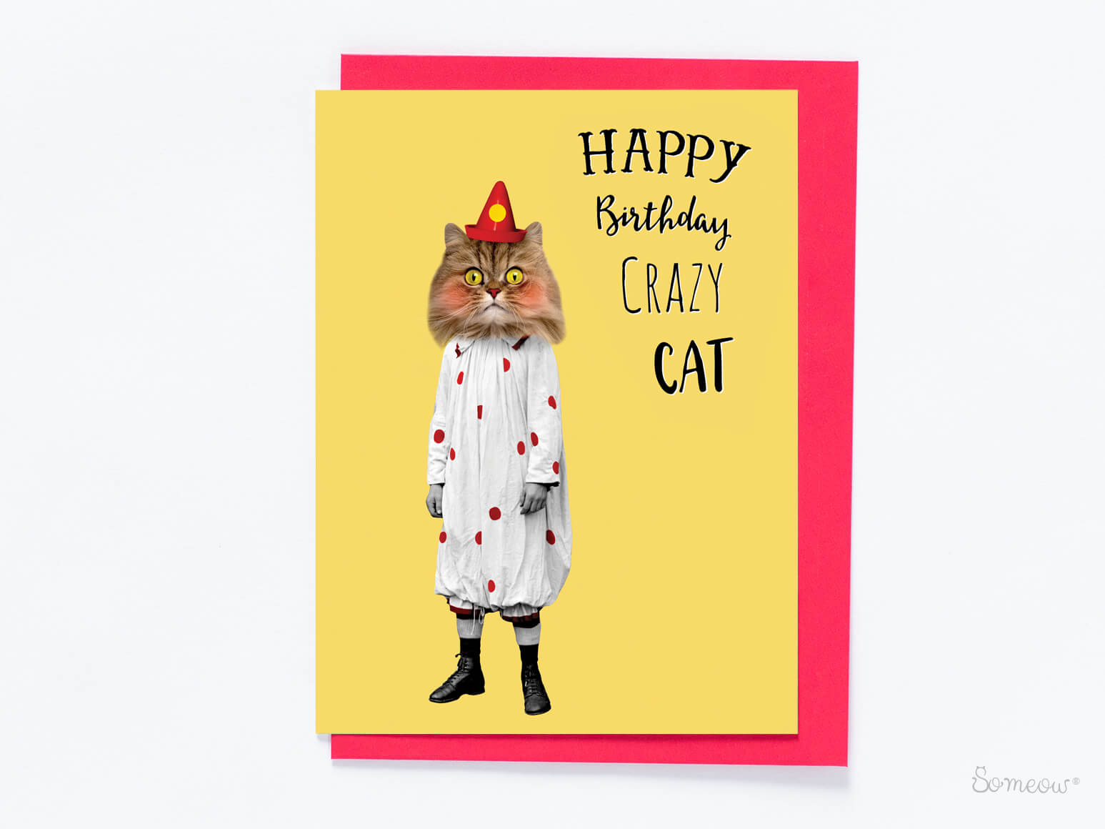 Le clown – Happy Birthday Crazy Cat