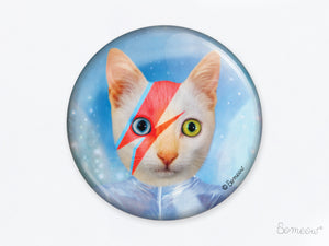David - Aimant de chat hommage à David Bowie