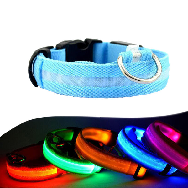 Night Safety Glow In Dark LED Dog Collar