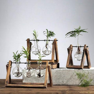 Plant Terrarium with Rustic Wooden Stand - Charmora.com