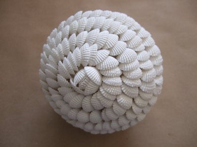 Shell Sphere Decoration (Cockle)