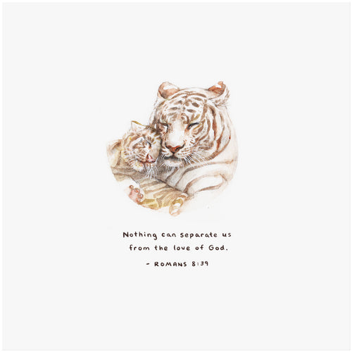 Romans 8:39 Artwork of tiger and cub -