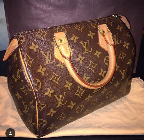 Louis Vuitton Speedy 25 Handbag