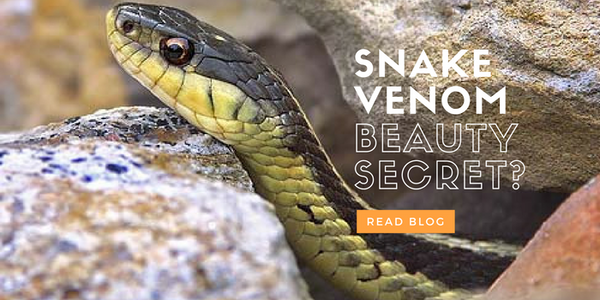 Snake Venom for face - Cleopatra like Beauty