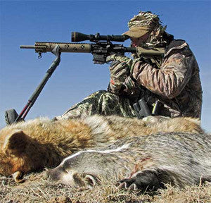Coyote hunting, when a predator becomes the catch