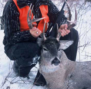 Winter Deer Hunting