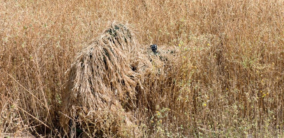 What color for my ghillie suit?