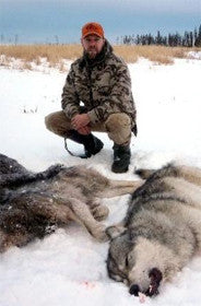 Wolves, the ultimate predators hunting. Part I