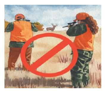 Be extremely aware about safety when hunting