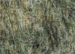 Ultra light Ghillie Blanket 5' x 9' - GhillieSuitShop
