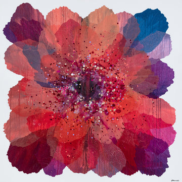 Coral Paper Daisy - limited edition print - unframed