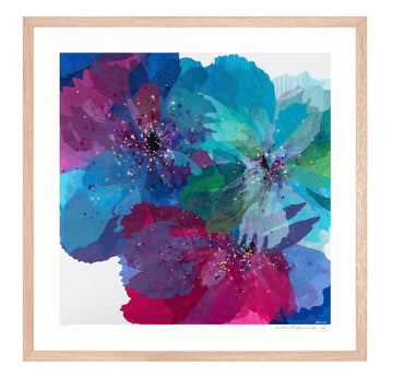 Blue Poppies - small limited edition print - framed