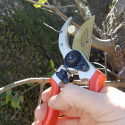 Bypass Pruning Shears