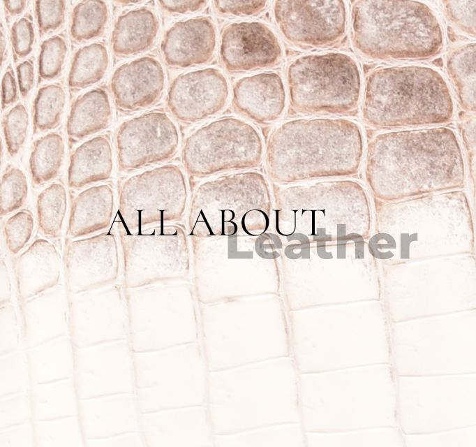 All About Leather!