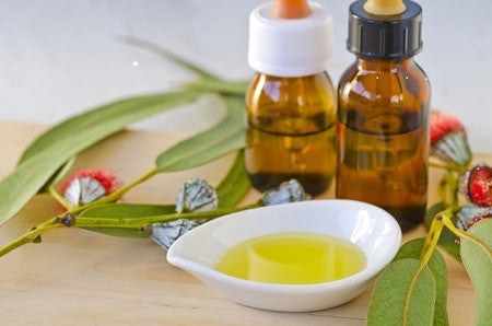 Eucalyptus Essential Oil - Essential Oils by Mistico Mimi - Copyright: <a href='http://www.123rf.com/profile_patrickhastings'>patrickhastings / 123RF Stock Photo</a>