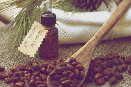Cedarwood Essential Oil (Virginian) - Essential Oils by Mistico Mimi  Copyright: <a href='http://www.123rf.com/profile_tolikoffphotography'>tolikoffphotography / 123RF Stock Photo</a>