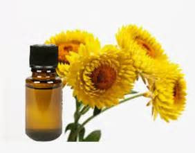 Helichrysum Essential Oil (Slovenia) - Mistico Mimi Wellness Centre & Essential Oils by Mistico Mimi