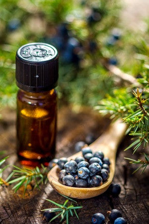 Juniper Berry Essential Oil - Essential Oils by Mistico Mimi - Copyright: <a href='http://www.123rf.com/profile_danifoto'>danifoto / 123RF Stock Photo</a>
