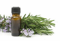 Rosemary Essential Oil - Essential Oils by Mistico Mimi