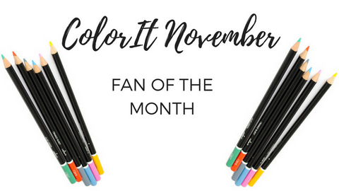 ColorIt November Fan of the Month