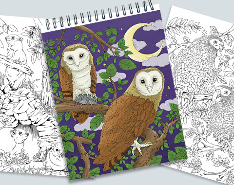 colorit colors of the jungle 50 original wild animals coloring pages, jungle coloring pages, barn owl coloring page