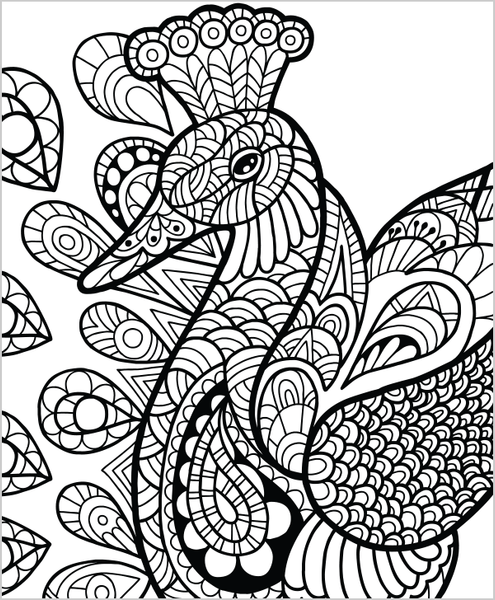 Wild animals coloring book for adults by colorit Crazy animals coloring book