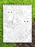 ColorIt jungle adult coloring page, wild animal coloring pages, barn owl coloring page for adult, into the wild, jungle book