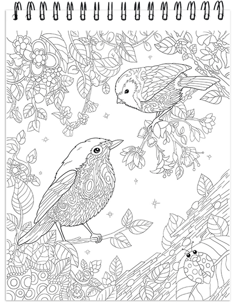 Nature Coloring Book For Adults With Hardback Covers & Spiral Binding –  ColorIt