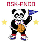 BSK-PNDB A boy panda holding a flag and a basketball