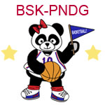 BSK-PNDG A girl panda holding a flag and a basketball