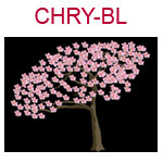 CHRY-BL A cherry blossom tree on a black background