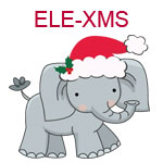 Elephant with santa hat