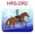 HRS-DR2 Fair skinned brown haired girl on brown horse blue star background