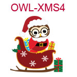 Owl with Santa hat in sleigh