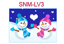 SNM-LV3 Boy and girl snowmen in blue and pink outfits