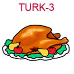 TURK-3 A cooked turkey on a platter