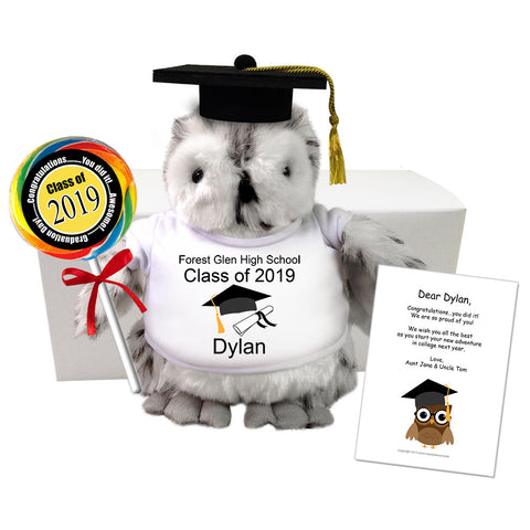 "Personalized Graduation Owl Class of 2019 Gift Set - 9"" Plumpee Snowy Owl"