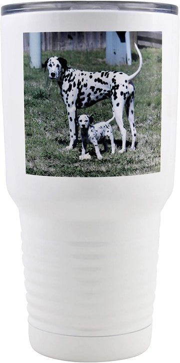 Personalized Insulated Tumbler with Your Custom Photo, Logo, or Design | 30 oz, White, Stainless Steel